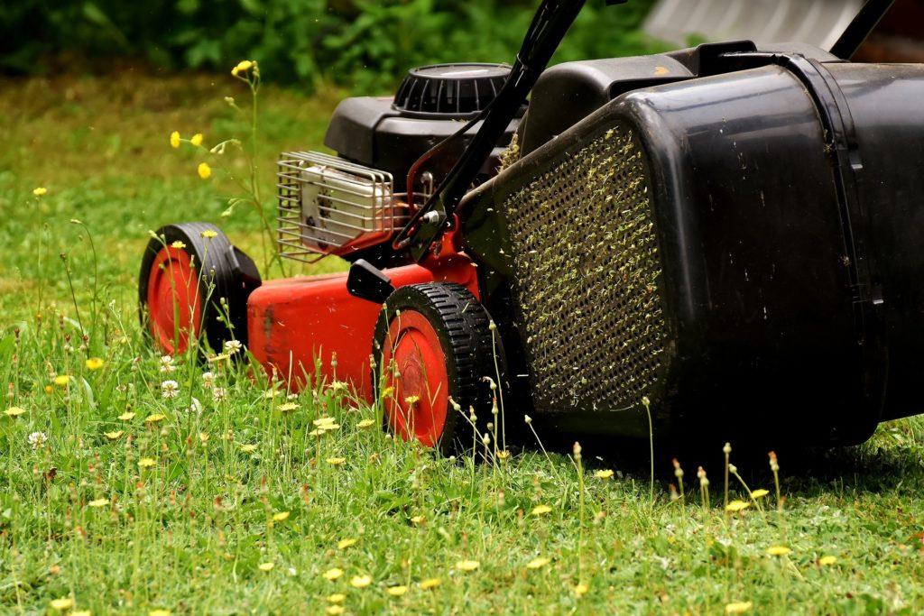 Лучшие газонокосилки